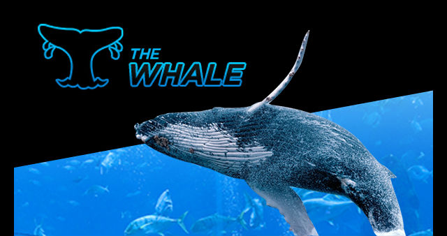888poker Guarantees $500K in Special Edition 'Super Whale'